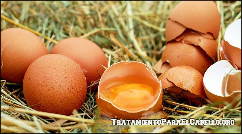 Huevo para el cabello