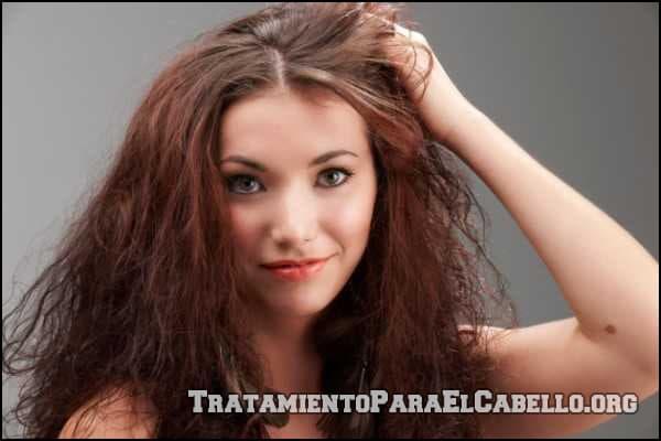 Aceite de oliva para el pelo seco y maltratado