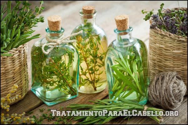 Aceite de romero en el shampoo