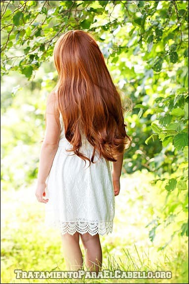 Aceite de coco para una cabellera larga