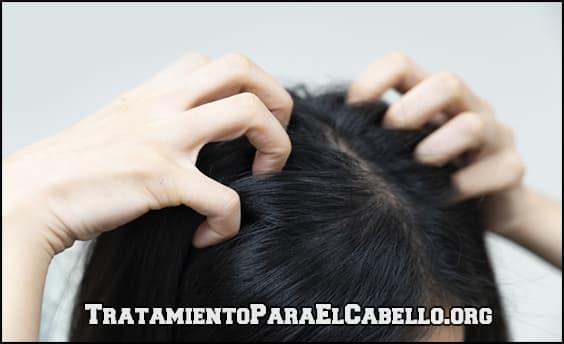 tratamiento contra los piojos con aceite de lavanda para el pelo