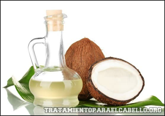 Sábila y aceite de coco para el pelo