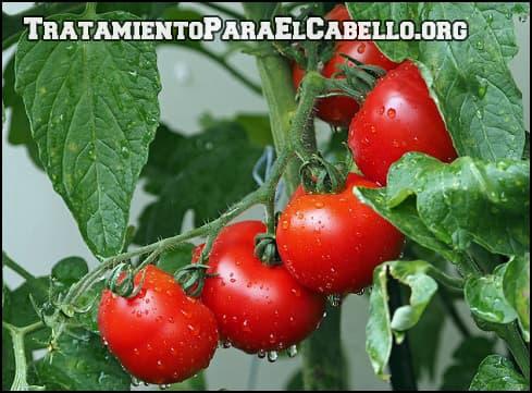 Para que sirve el tomate para el cabello